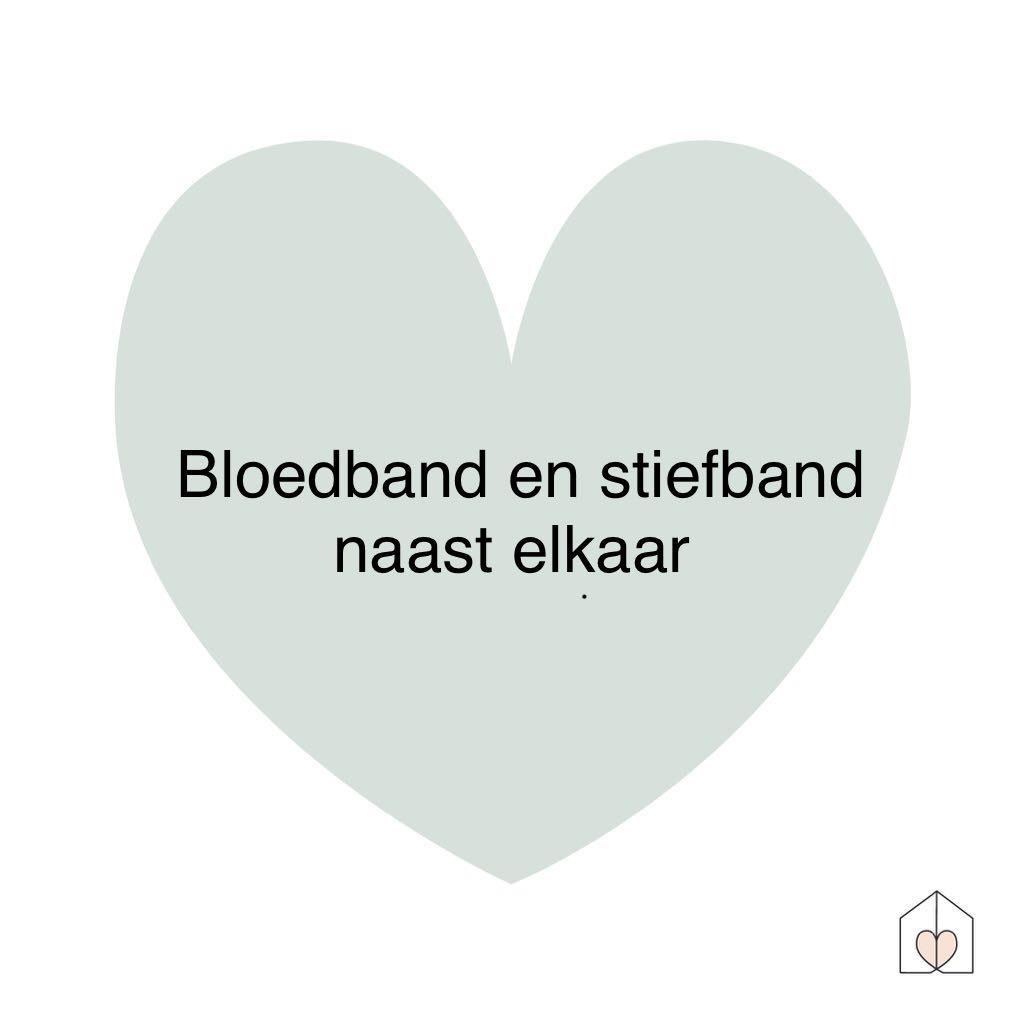 bloedband en stiefband naast elkaar